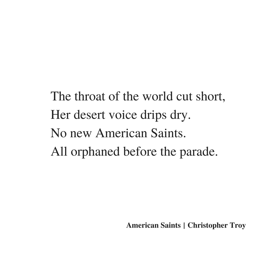 christopher troy poem